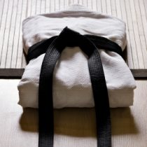 karate_uniform_folded